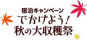 logo_b_color